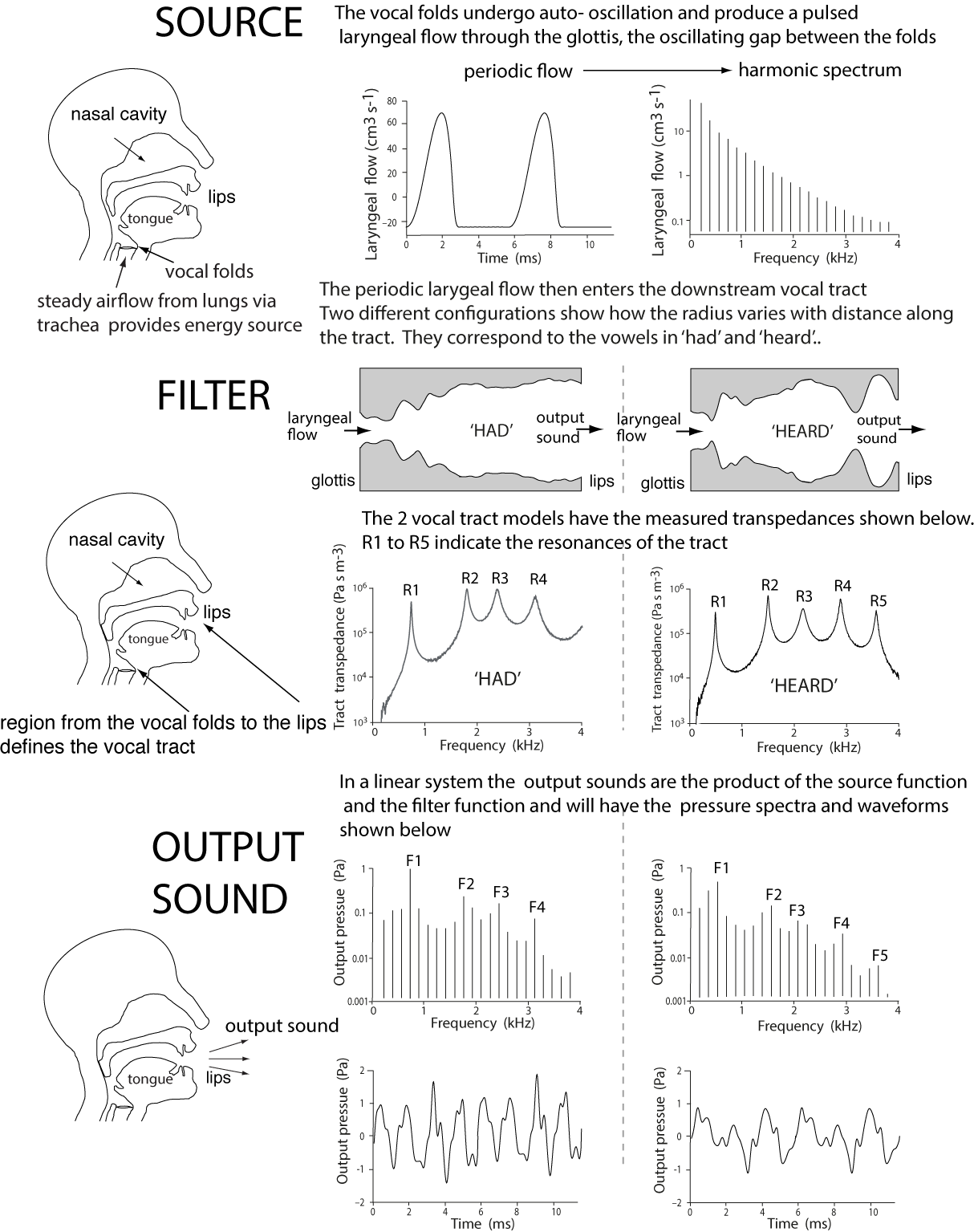 Voice Acoustics An Introduction To The Science Of Speech And Singing Viewing Gallery For Fold Diagram Displaying 18 Images Measured Source Filter