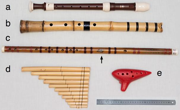 Flute Acoustics An Introduction