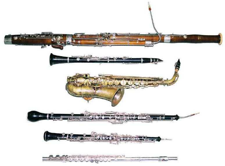 player of woodwind instrument